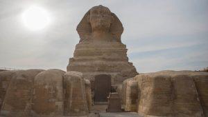 أسد أم لبؤة؟ ما سر الحيوان الغريب وراء تمثال أبو الهول في مصر؟