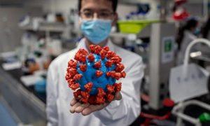 الكشف عن خاصية سيئة لفيروس كورونا