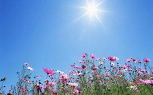 طقس معتدل الحرارة في اغلب المناطق اليوم